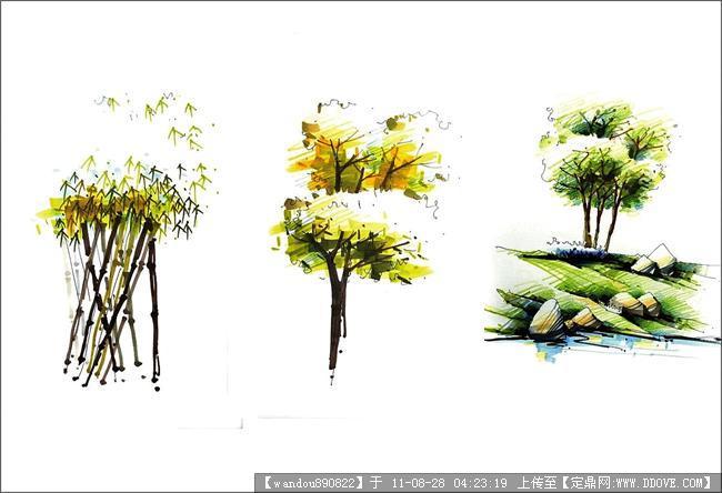 马克笔树木画法