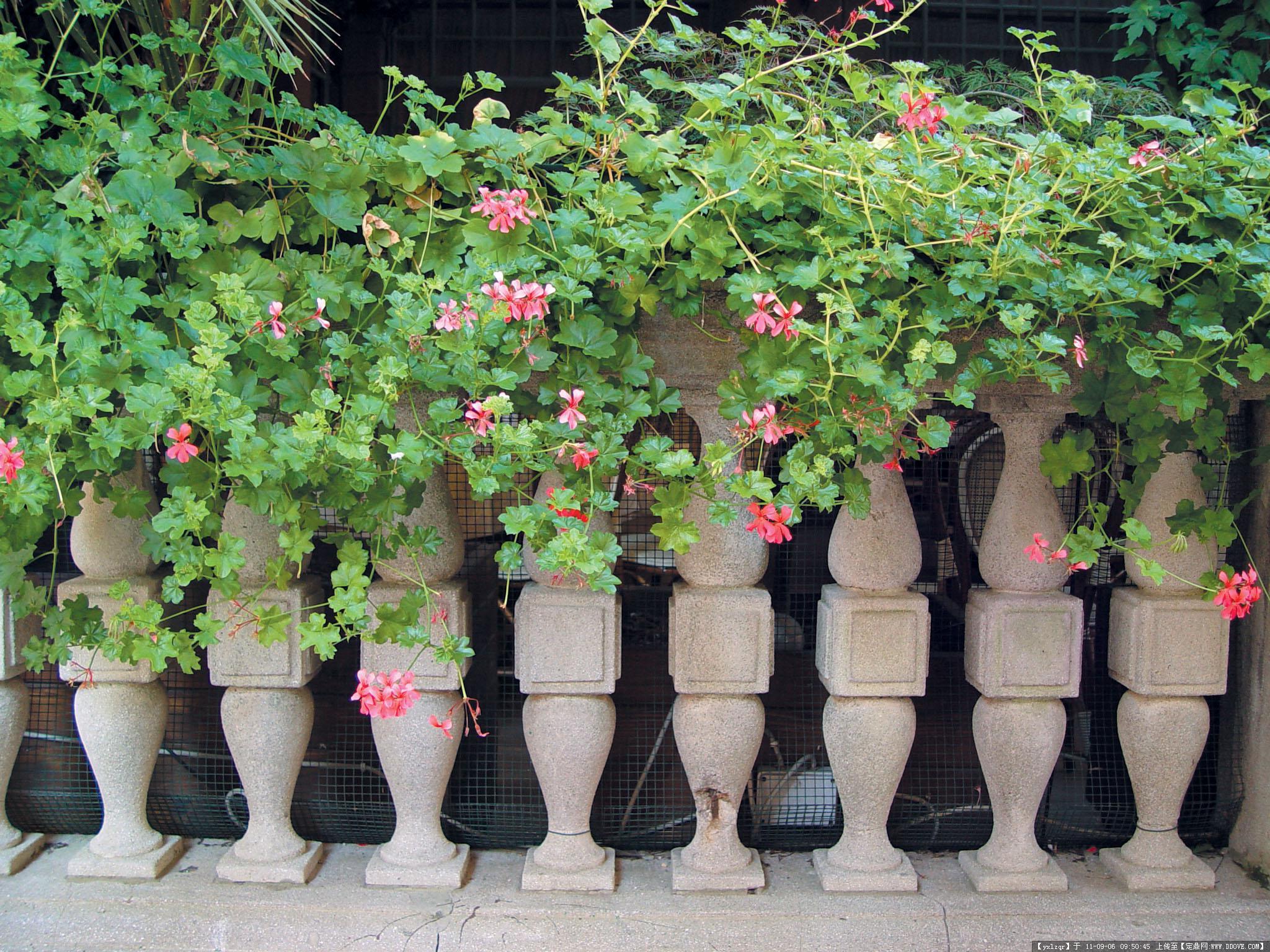 柱栏造型的图片浏览