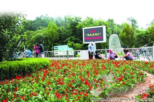 德州:锦绣川迎太博会栽4万余盆花卉   园林资讯   中国园林网