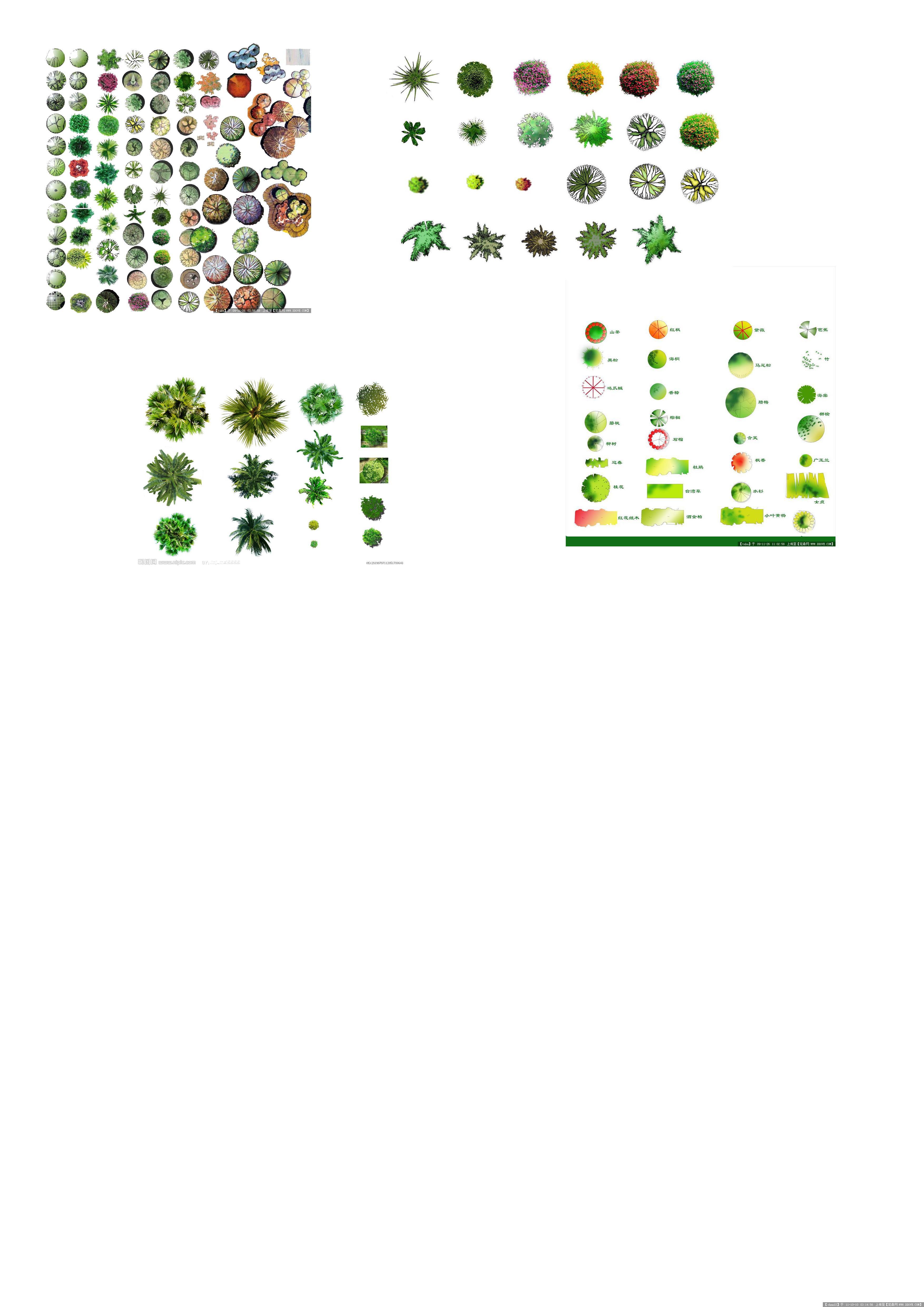 植物平面图例的图片浏览,配景素材,园林植物,园林建筑