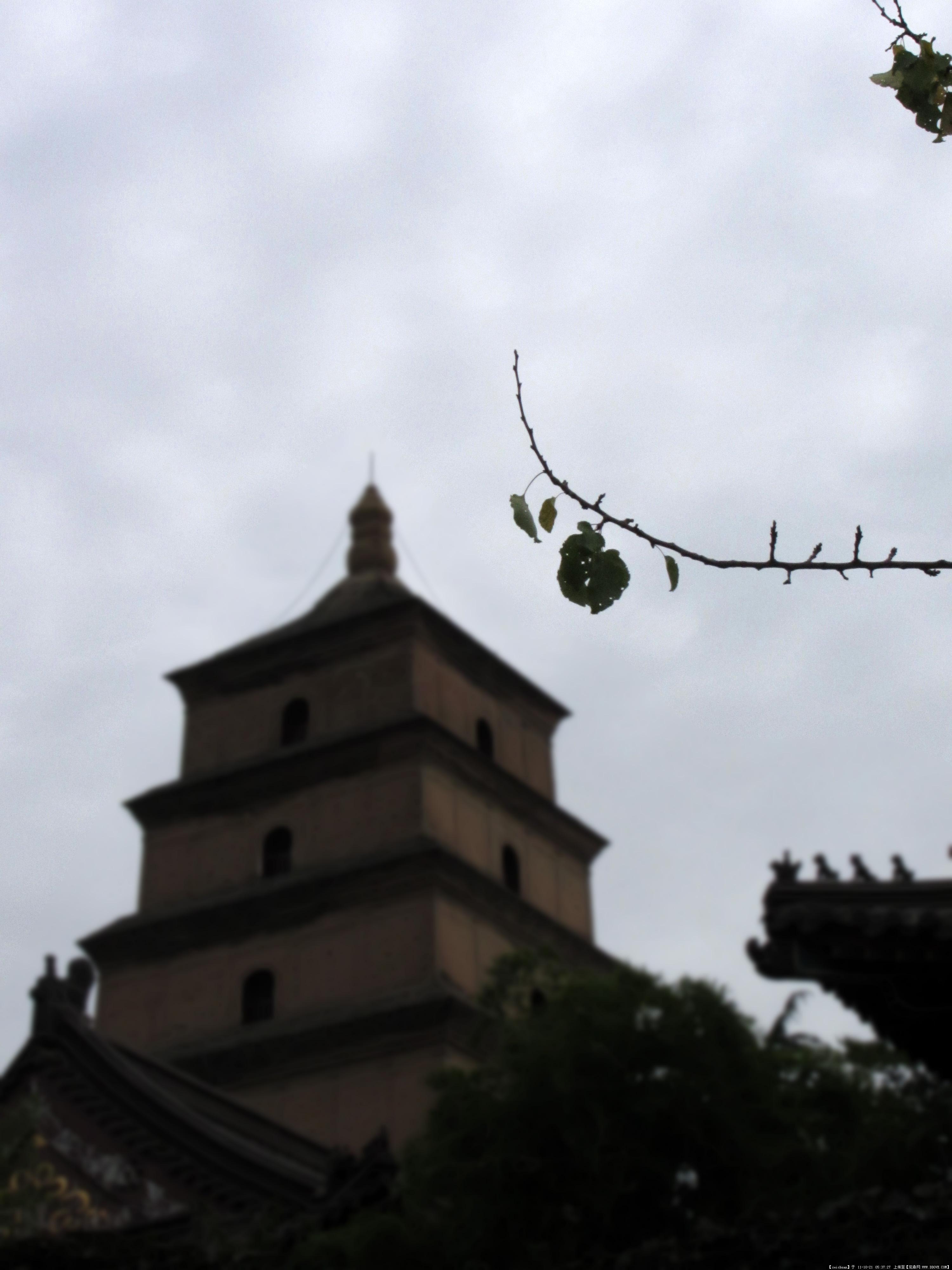 大雁塔北广场实景图片