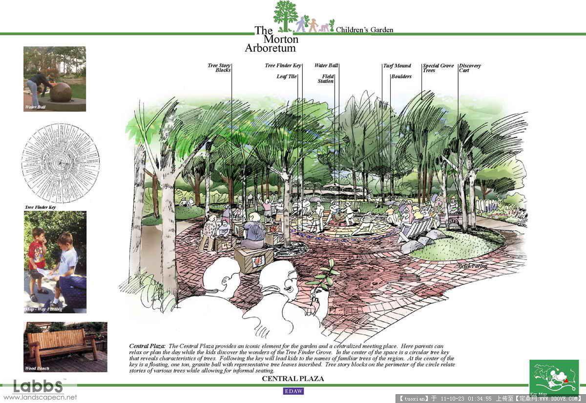 盆景 盆栽 平面图 植物 1200_826