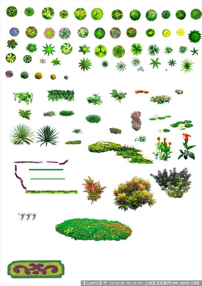 psd植物的平面图