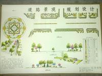 道路设计方案图