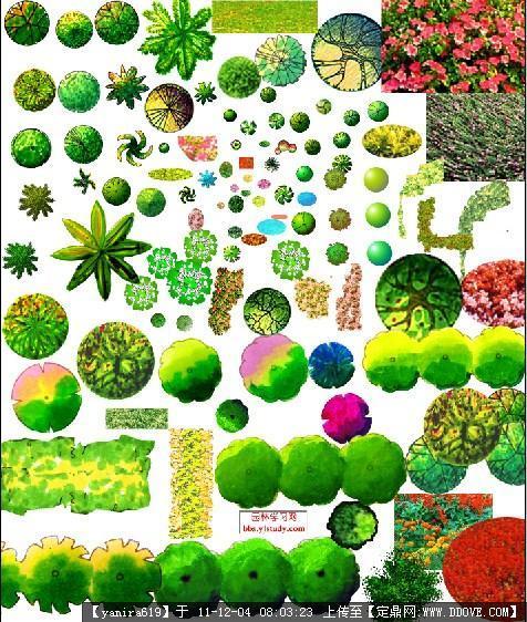 ps植物平面图标