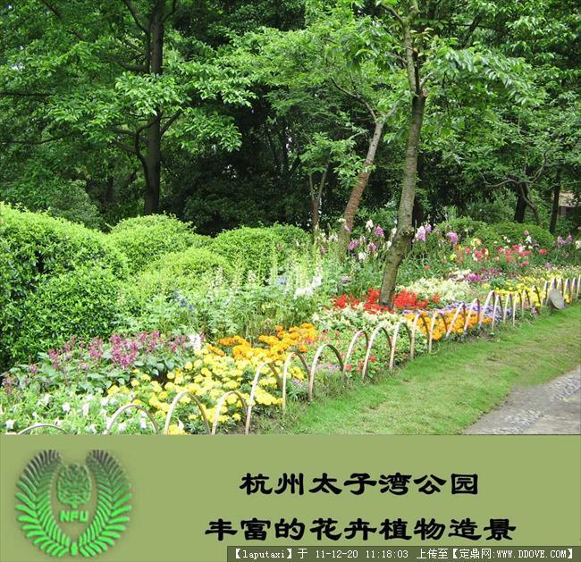 郑州庭院景观绿化_庭院绿化设计_庭院围栏设计