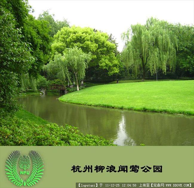 公园植物配置1