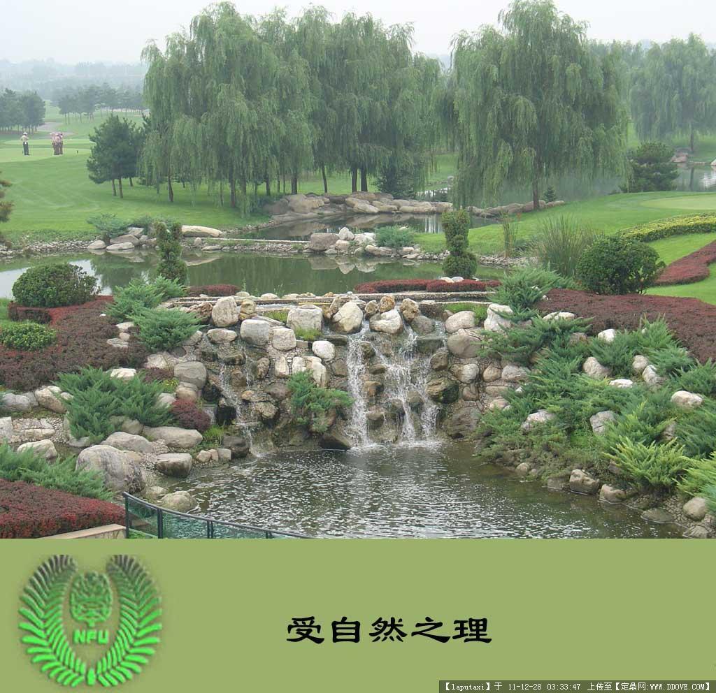 古典园林植物造景-受自然之理