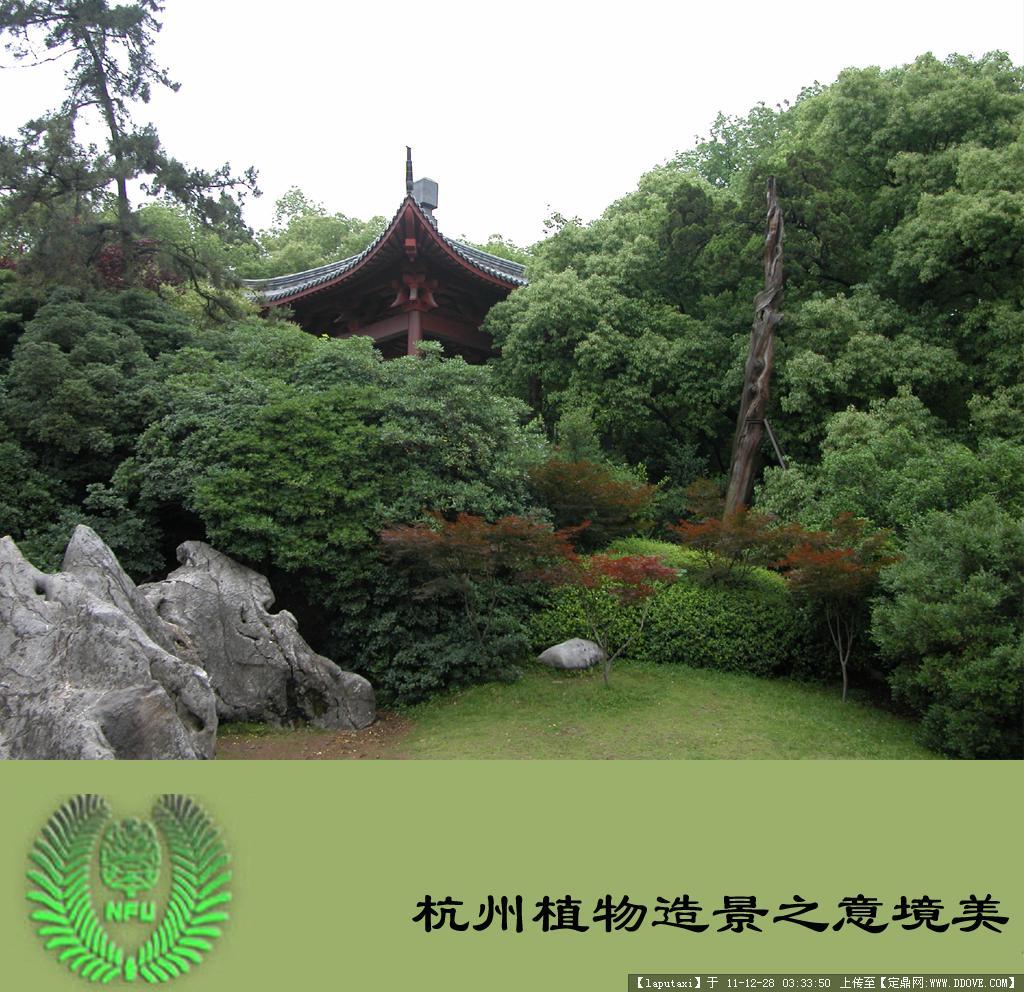 古典园林植物造景-意境美4.jpg