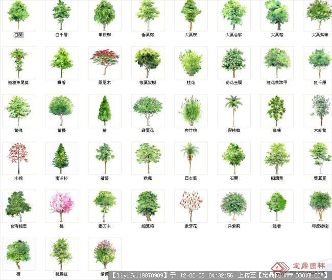 平面手绘景观手绘平面图手绘平面图_点力图库  植物平面手绘素材,景观图片