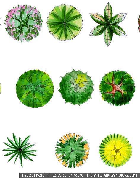 定鼎网 定鼎素材 配景素材 园林植物 ps贴图素材