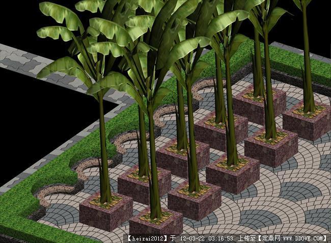 景观设计图植物配置图作业