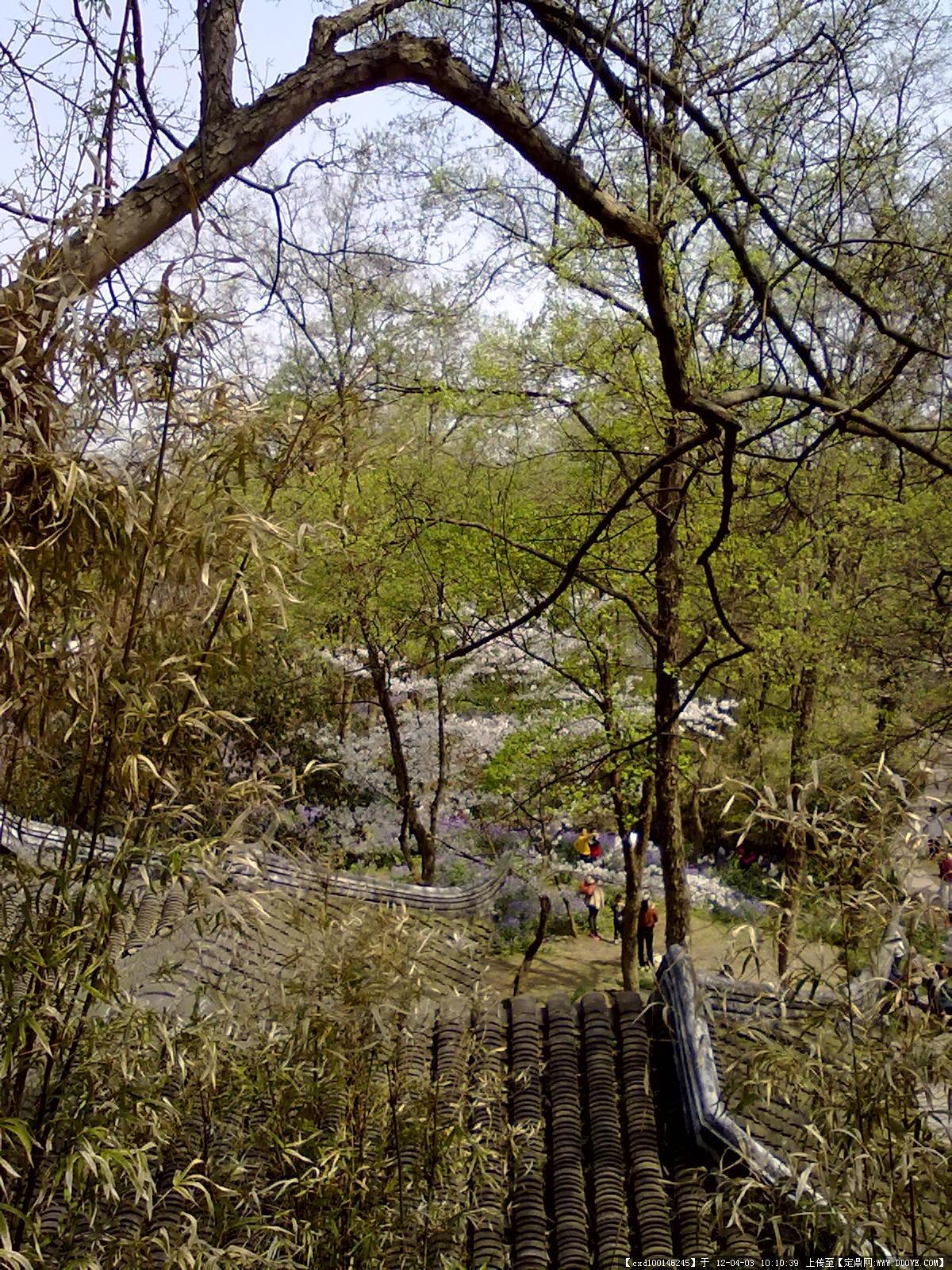 苏州虎丘风景区实景图片的图片浏览,园林项目照片,区