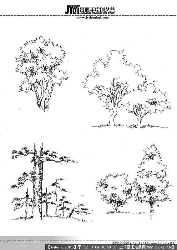 手绘植物表现效果图的下载地址,园林效果图,手绘效果