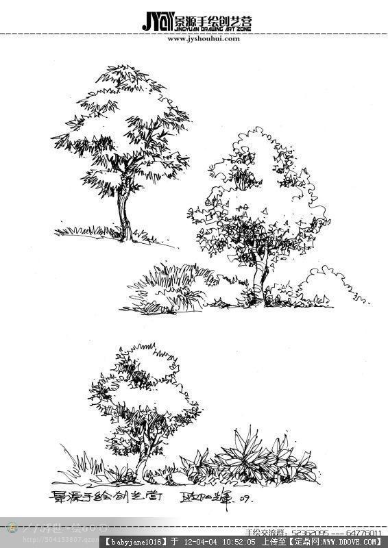 手绘植物; 植物手绘效果图_图片素材库; 电信迅雷高速下载_迅雷网日韩