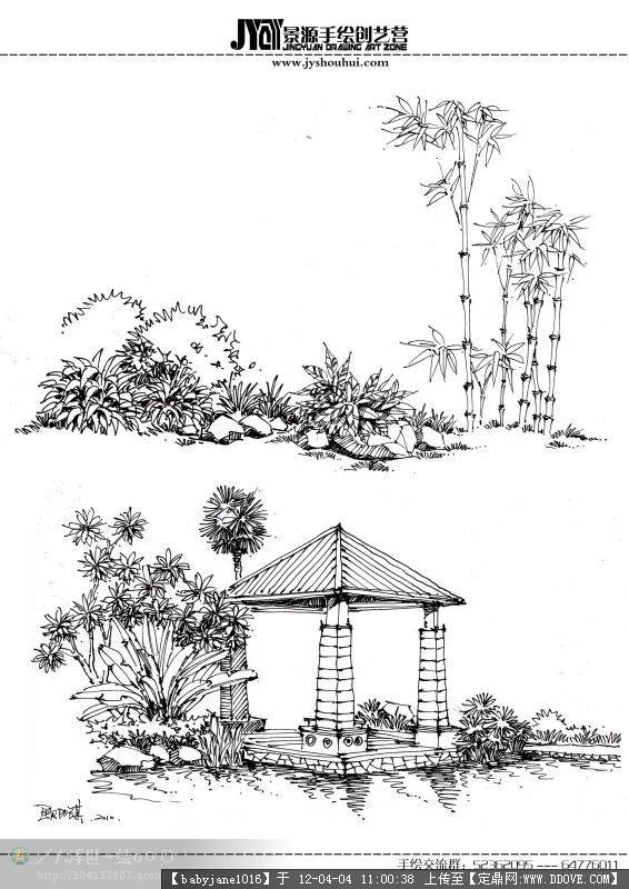 手绘植物表现