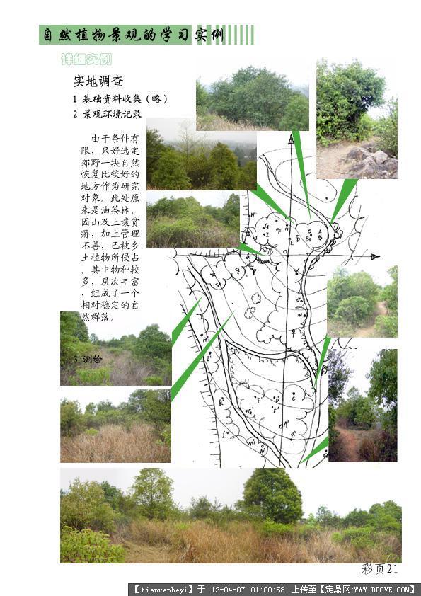 植物造景学习方法