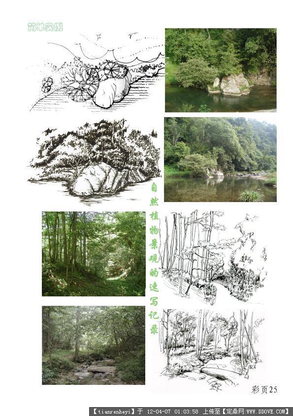 植物配置平面手绘图;