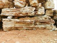 景观石 怪石 假山石-0.JPG