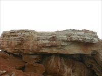 景观石 怪石 假山石-08.JPG