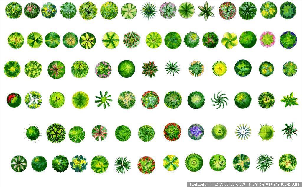 大量实用园林素材┊大图 植物景观平面布置图图片