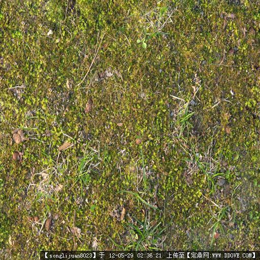 ps植被素材的下载地址,配景素材,园林植物,园林建筑