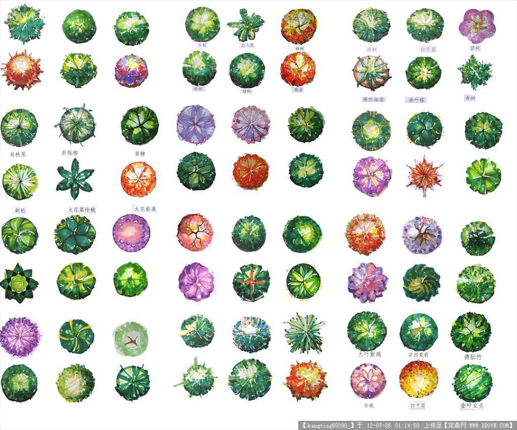 手绘平面图各种树