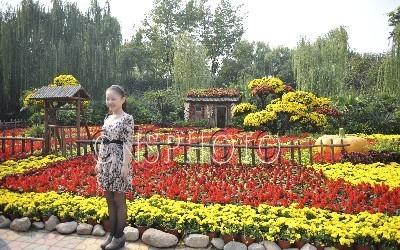 """实业总部基地景观设计——万漪景观  """"雨荷人家""""花卉造型"""