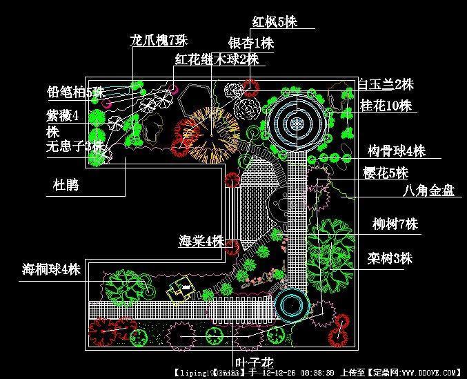 花园植物配置图
