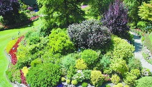 庭院花境设计图