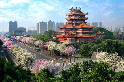 提出加快建设生态型,惠民型,节约型森林城市的工作思路,规划布局和
