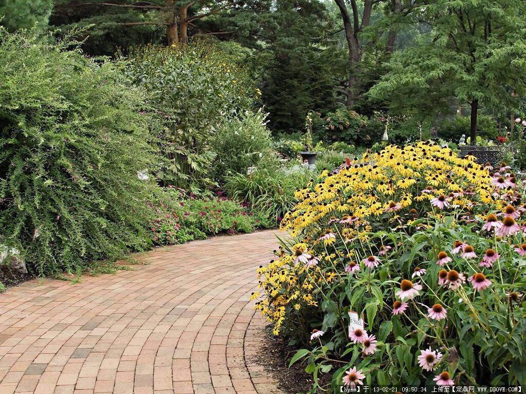 花园景观设计实景图的图片浏览