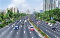 公路绿化效果图